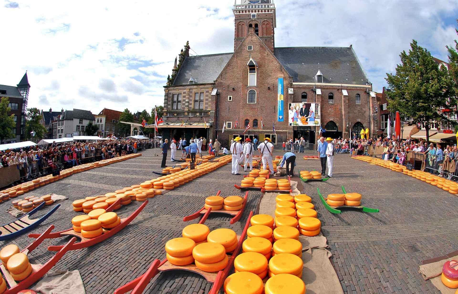 Kaasmarkt-Alkmaar-kazen-grond-