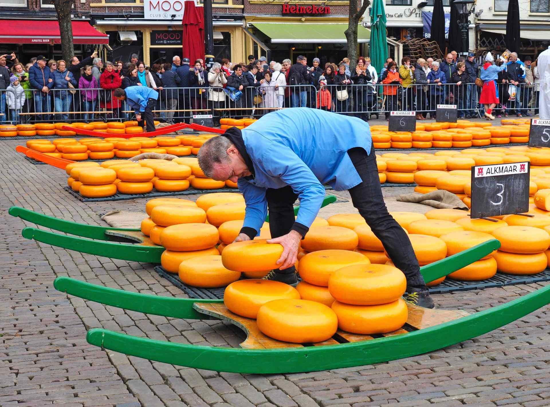 Kaasvader-controleert-de-kazen-in-Alkmaar-kaasmarkt